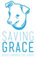 Saving Grace logo final